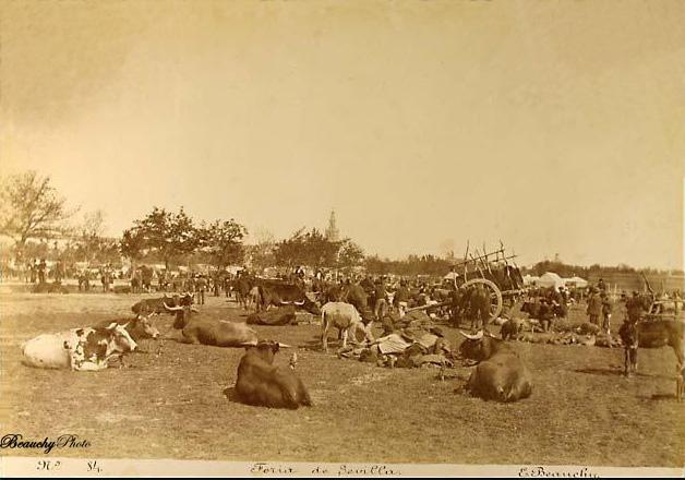 Mercado de ganado de la Feria de Sevilla