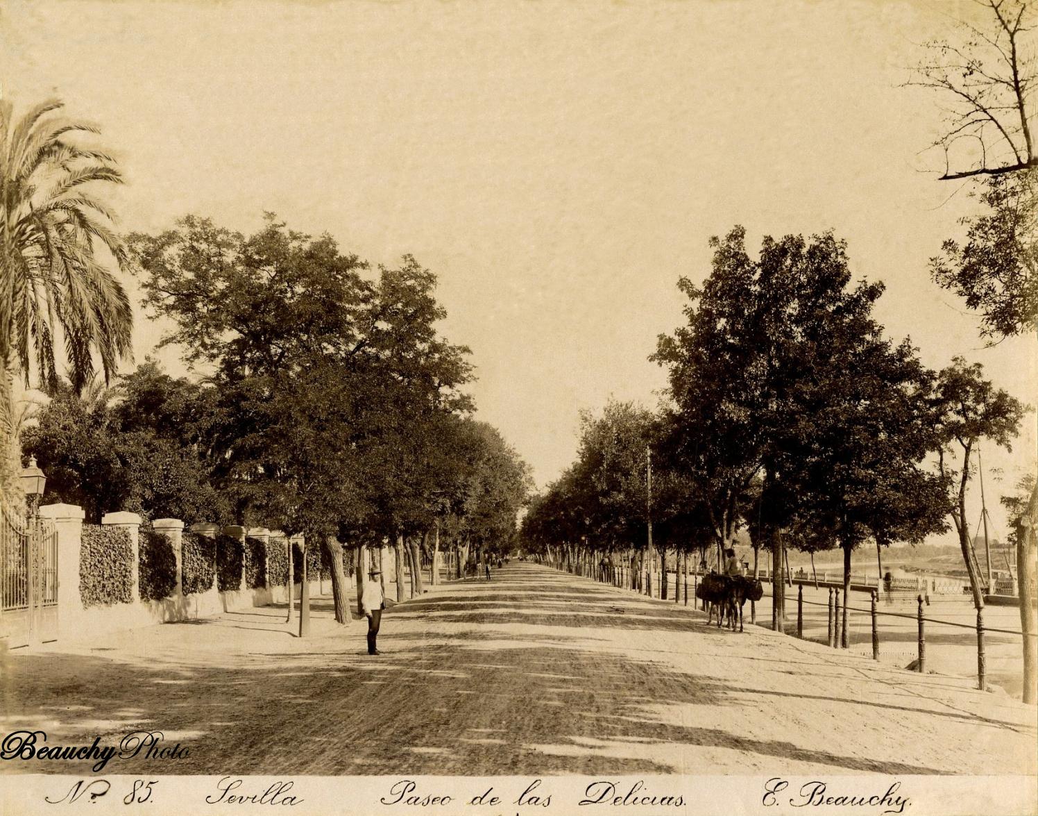 Beauchyphoto_Paseo_de_las_Delicias_5_Emilio_Beauchy_Cano_fotografias_antiguas_postales_vistas_y_monumentos