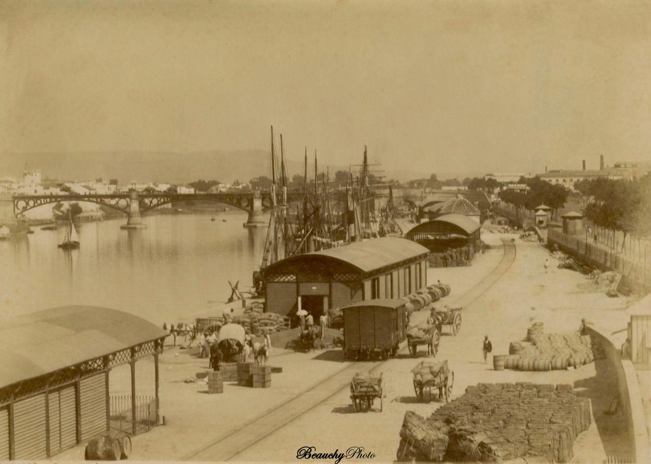 Muelle y Paseo Colón de Sevilla