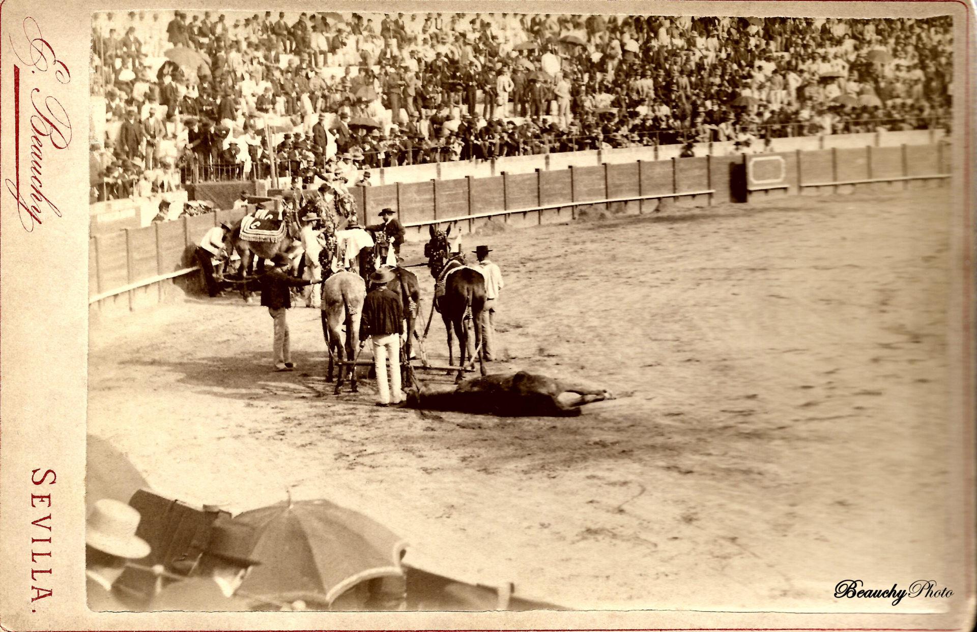 Las Mulillas se llevan al toro