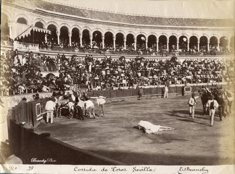 Caballo muerto en una corrida de toros en Sevilla