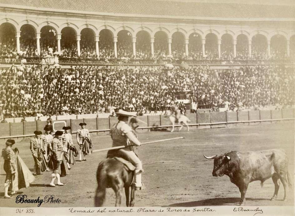 Beauchyphoto_Tomado_del_natural_Plaza_de_Toros_de_Sevilla_1890_Emilio_Beauchy_Cano_fotografias_antiguas_postales_retratos_toros